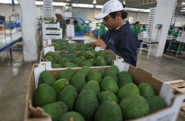 Exportaciones: Perú es el tercer proveedor de alimentos de Chile