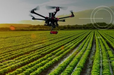 Atención empresas y startups: lanzan convocatoria de innovación para transformar agroindustria