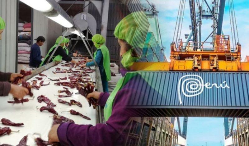 Exportaciones peruanas sumaron U$ 24,334 millones en primer semestre