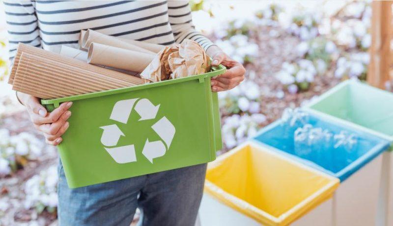 medio ambiente cuidado empresas ideas