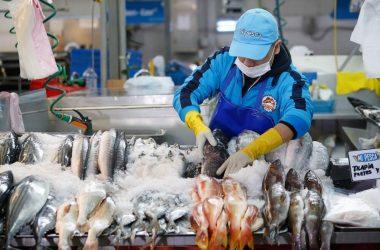 Pescados y mariscos subieron de precio en agosto