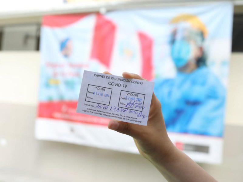 carnet de vacunacion ica