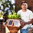 alinti emprendedor planta da luz