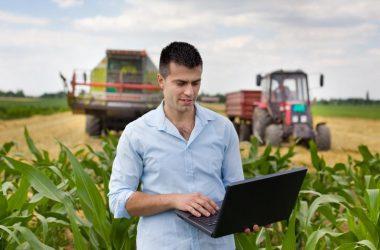 Estos son los 5 ejecutivos más requeridos del sector agroindustrial