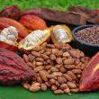 exportaciones cacao