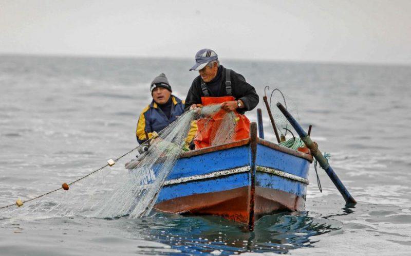 ley de pesca cambios